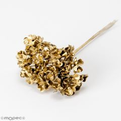 Ramito royal dorado,pomo 6, min.12