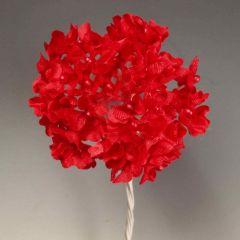 Ramito royal rojo pomo 6, min.12