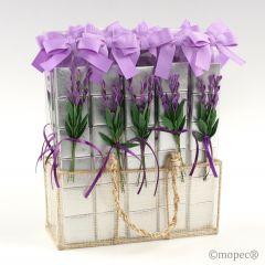 Expositor 30 tiras 6 napolitanas flor lavanda*